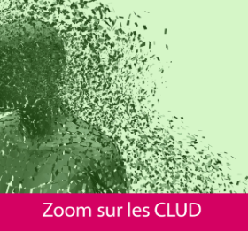 dossier_douleur_clud